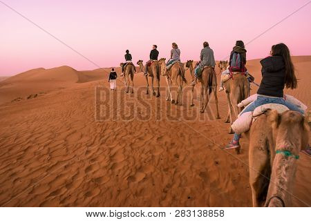 Bidiyah, Oman - November 5, 2018: Group Of Tourists Ride Dromedaries At Dawn In The Desert Dunes (om