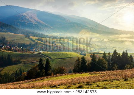 Countryside Beautiful Autumn Sunrise In Mountains. Weathered Grass And Pine Trees. Village Among Dis