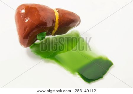 poster of Figure of human liver with gallbladder lies on white with seeping liquid with toxins after detox. Concept photo, symbolizing liver detoxification or detox of toxins, alcohol and harmful substances