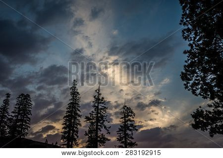 Beautiful Sunset Sky With Jeffrey Pine Trees And Interesting Cloud Formations In Mammoth Lakes Calif