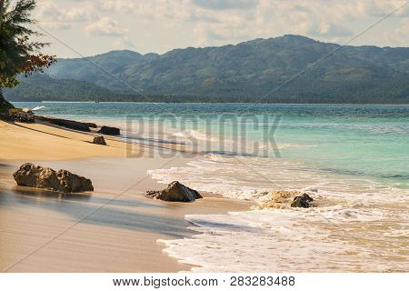 Travel Vacation Tropical Destination. Tropical Tree Beach Landscape. Travel Vacations Destination. T