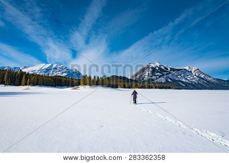 A Single Woman Snowshoeing In The Canadian Rocky Mountains Under Clear Blue Skies. Kananaskis Lakes