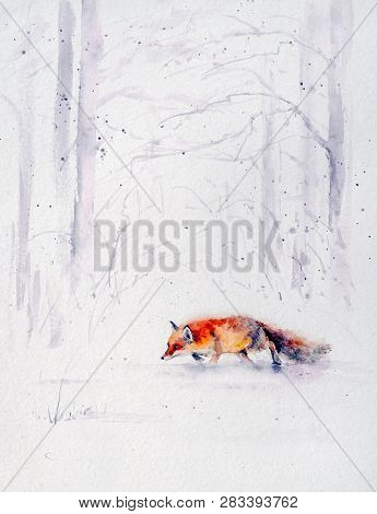 Winter Scene From The Wild Nature- Red Fox Running  In White Snow.picture Created With Watercolors.