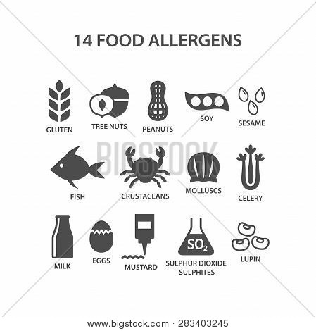 Food Allergens Icon Set. Black Isolated 14 Food Allergens With Text Names Vector Set. Gluten, Peanut