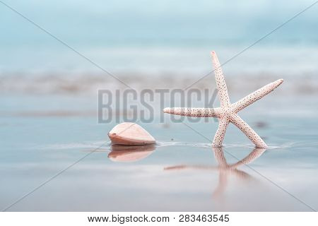 Starfish On Sandy Beach In Summer With Sea Background