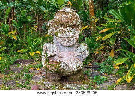 The Smiling Tiki Or Ti'i. Original Carved Stone Tiki. Polynesian Sacred Idol Statue Hidden In Jungle