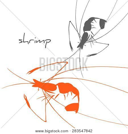 Shrimp silhouette isolated on white. Background with crustaceans for sea food restaurant menu. poster