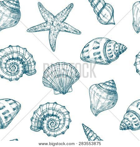 Seashells Seamless Pattern. Sea Shell Summer Ocean Texture. Nautical Starfish Repeating Vector Vinta