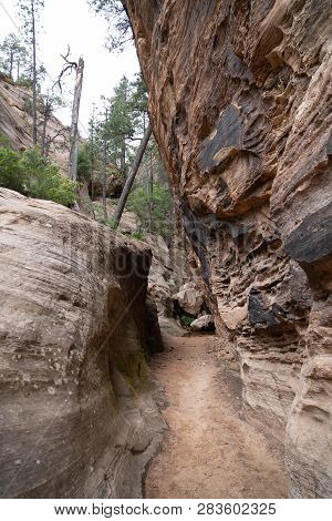 Hidden Canyon Trail Hike In Zion National Park On An Overcast Summer Day. The Hike Features Steep Dr