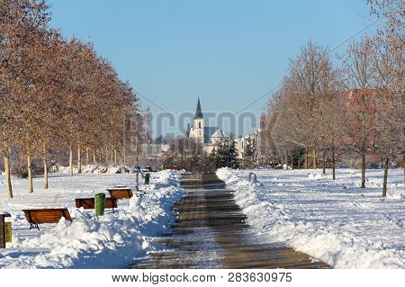Trees In Beautiful Romantic Winter Alley Covered With Snow With Sidewalk In The Middle, Church In Ba