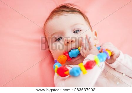 Cute Caucasian Baby Girl Taking Into Her Mouth A Teething Toy. First Tooth Concept Illustrative Imag