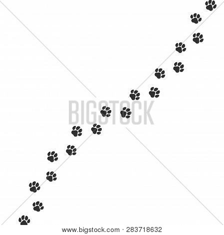 Paw Print Trail On White Background. Vector Cat Or Dog Wild Animal Pawprint Walk Line, Paw Path Patt