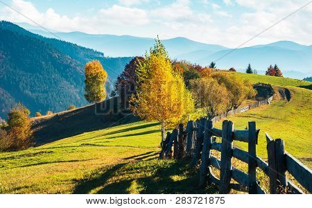 Beautiful Autumn Countryside In Mountains. Wooden Fence Along The Road Through Grassy Hills. Carpath