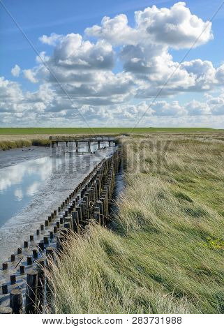 Salt Marsh In North Frisia At North Sea In Wadden Sea National Park,germany