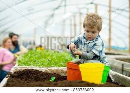 Happy Family. Happy Family Workign With Soil In Garden. Happy Family In Greenhouse. Happy Family In