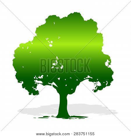 Decorative Tree, Vector Illustration, Eco Tree, Vector Illustration Tree Silhouette Icon, Tree Silho