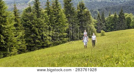 Happy Family: Father With Son On Shoulders And Mother Go On A Green Field On A Background Of Pine Fo