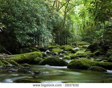 Peaceful River Flowing Over Rocks