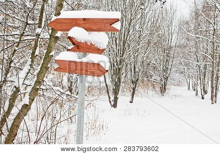 Signpost And Trees Under The Snow In A Park