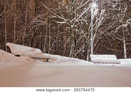 Benches Under The Snow And A Street Lamp In A Park