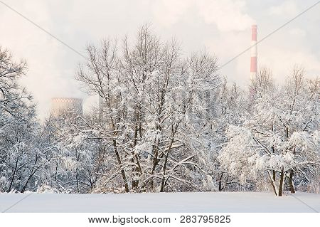 Factory Pipes And Trees In Snow In Winter