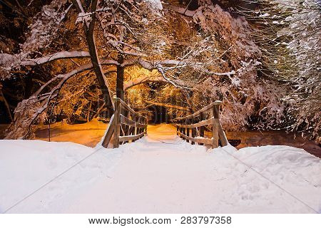 Trees Under Snow And Bridge In Winter Evening