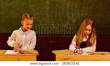 Examination. Girls Are Ready To Examination. Examination Preparing. School Examination Of Two Pupils