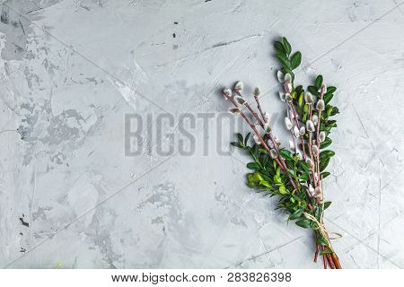 Easter Decoration With Willow Branches And Green Branches Of Thread Over Light Gray Concrete Table S