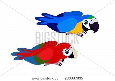 Vector Cartoon Animal Clipart Ara Parrots, Macaw