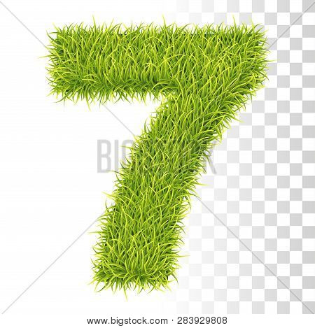 7. Vector Number Seven Illustration. Fresh Green Grass Realistic Texture