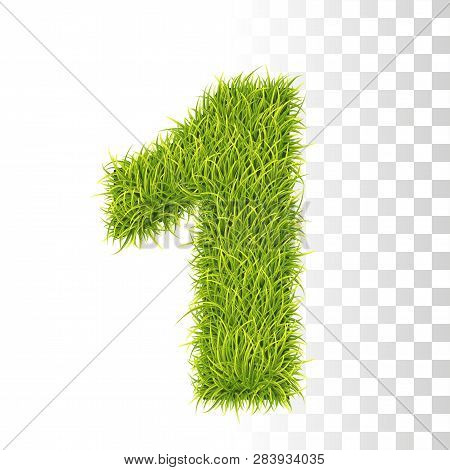 1. Vector Number One Illustration. Fresh Green Grass Realistic Texture
