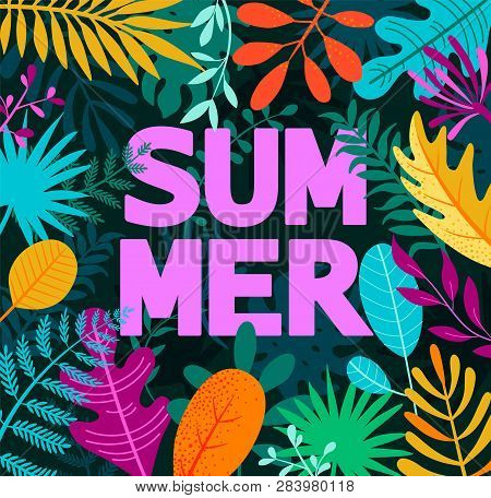 Greeing Summer 2019 Banner, Card, Poster , Among Tropical Palm Leaves. Summertime Background With Tr