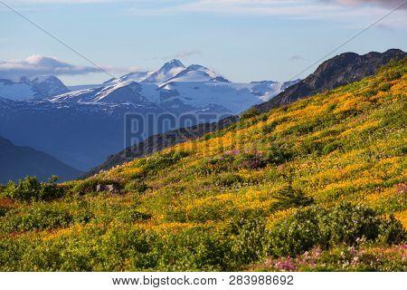 Mountains in Alaska, United States
