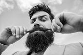 Expert tips for growing and maintaining moustache. Man bearded hipster twisting mustache sky background. Ultimate moustache grooming guide. Hipster handsome attractive guy close up poster