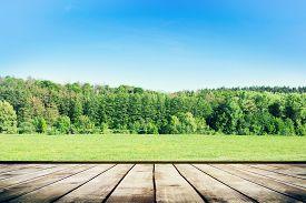 Green Field Under Blue Sky. Wood Planks Floor. Beauty Nature Background