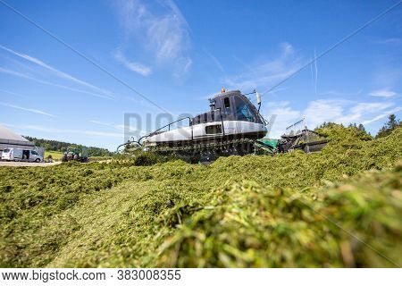 Bavaria / Germany - August 20, 2020: Prinoth Leitwolf Snowcat Prepares The Silage For The Biogas Pla