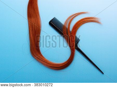 Long Strand Of Hair With Hair Comb On Blue Background Isolated, Top View. Hairdresser Composition Wi
