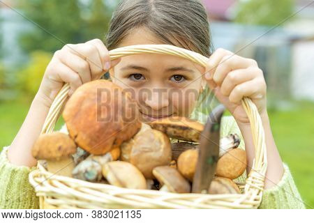 Various Raw Mushrooms In A Wicker Basket Witch Caucasian Girl Hold In Her Hands. She Looks Out From