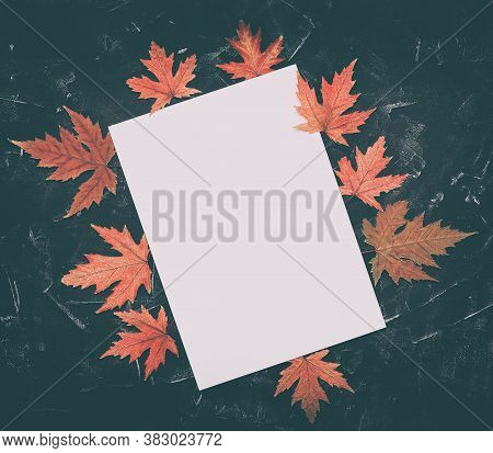 Blank White Paper Mockup And Frame Made From Red Dry Maple Leaves. Black Stone Background. Template