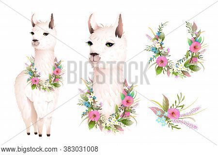 Cute Lama Realistic Vector Character Design With Wild Flowers. Artistic Botanical Bohemian Animal De