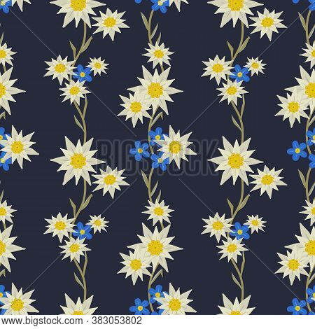 Floral Hand Drawn Seamless Pattern With Edelweiss. Star Shape National Symbol Of Alpes. Mountain Alp