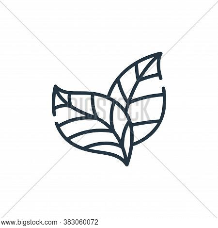 leaves icon isolated on white background from ecology collection. leaves icon trendy and modern leav