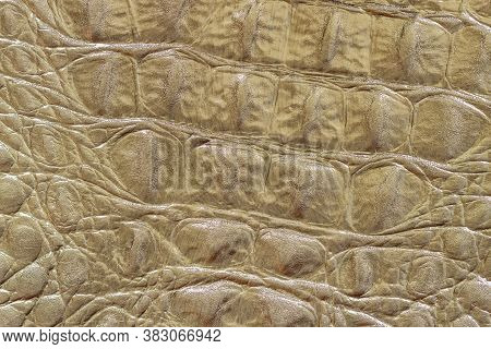 Texture Of Genuine Leather Close-up, Khaki, Embossed Under The Skin Of Reptile, Croco. Trendy Patter