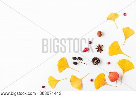Autumn Background. Yellow Fall Leaves Of Gingko Biloba With Physalis Flower, Berries And Cones Isola