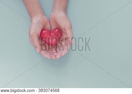 Hands Holding Red Heart, Organ Donation, Wellbeing, Health Insurance And Csr Concept, World Heart Da