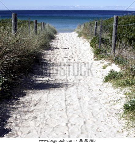 Sandy Path To The Beach