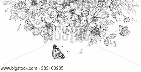 Hand Drawn Blooming Flowers And Butterflies On Blank Background. Black And White Wildflowers And Ins