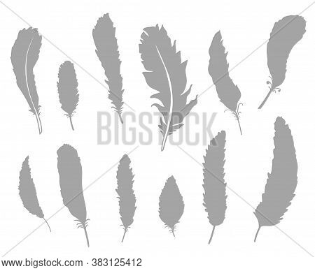 Silhouette Of Feather On Isolated White. Abstract Feathers On Isolation Background. Black And White