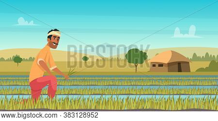 Indian Agriculture Working. Farmer Harvesting In Field Asia Vector Background In Cartoon Style. Farm