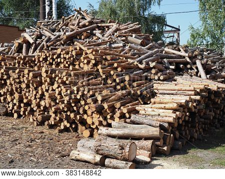 Raw De-barked Pine Wood Logs In A Lumber Staging And Storage Yard - Western Oregon. Raw Timber Stack